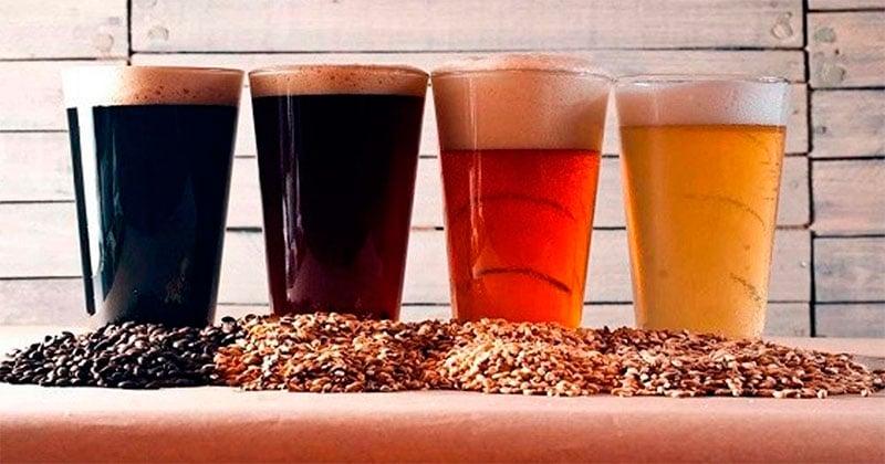 Franquicias de Cervecerías Artesanales